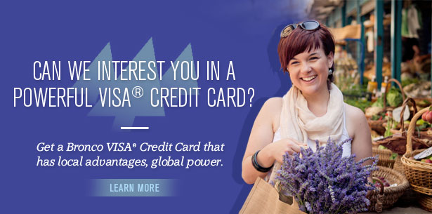 Can we interest you in a powerful VISA® Credit Card?