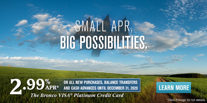 VISA – Small APR, Big Possibilities